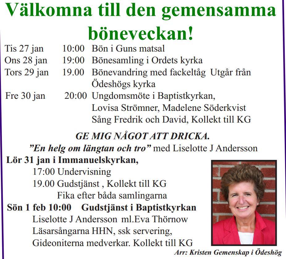Böeveckan2015